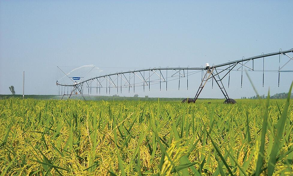 6 Tips for Converting Your Rice Farming Equipment to Centre Pivot Irrigation