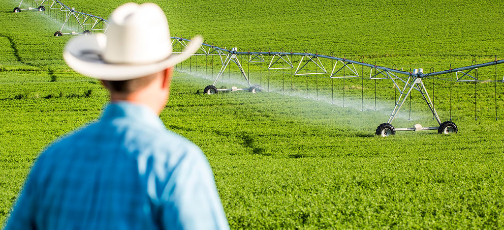 variable rate irrigation management - center pivot