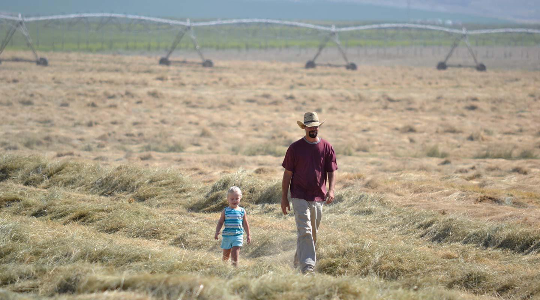 Harvest-2012-049_INSIDE.jpg