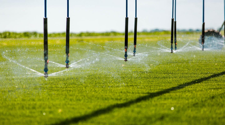 Sprinkler_blog2