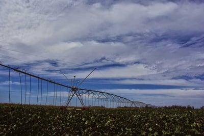 Unusual out-of-season rains delay cotton harvest in Australia