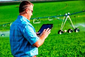 Navigating the Data Frontier in Irrigated Agriculture