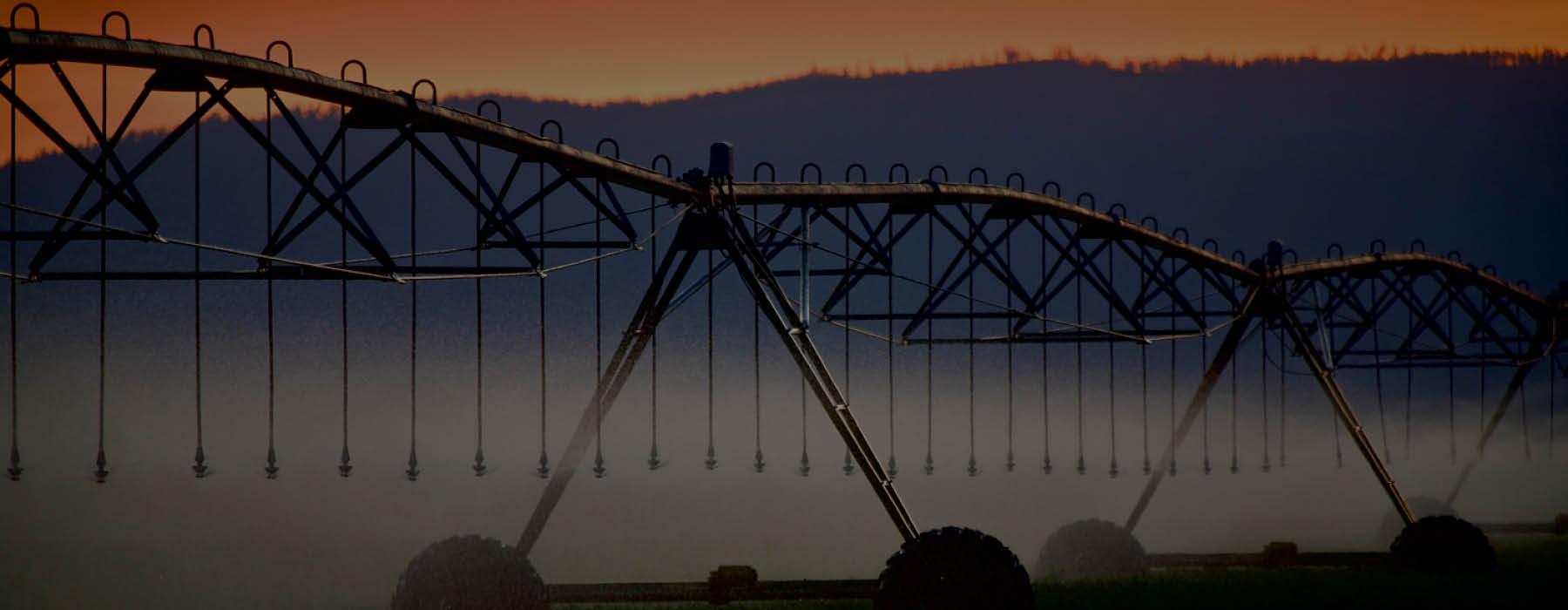 pivot sunset header.jpg
