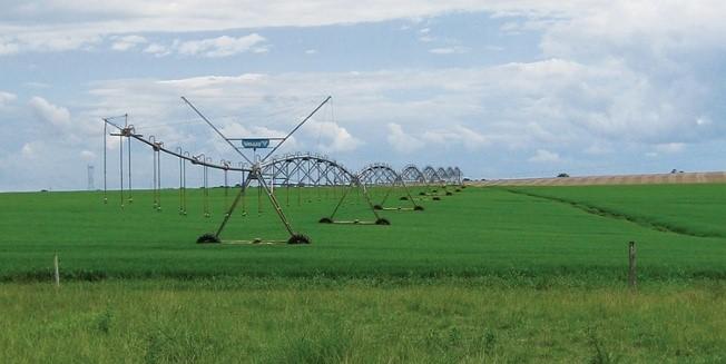 6 Consejos para la conversión de su equipo de cultivo de arroz para un pivot