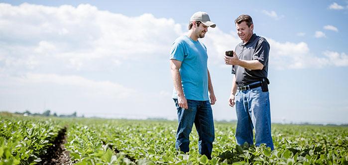 Monitor soil moisture