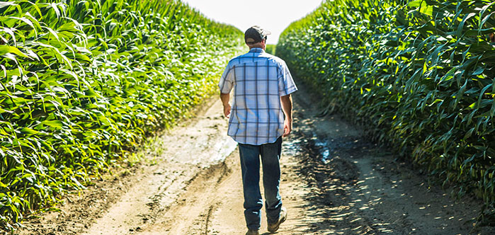 increase yield by eliminating access roads and expanding irrigation acres