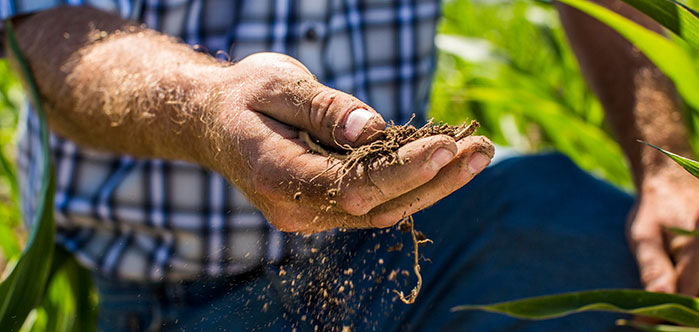 Learn more about soil types and how they affect irrigation efficiency