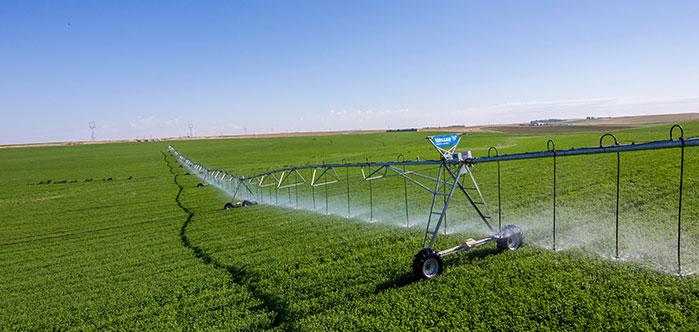 field terrain - center pivot on corn